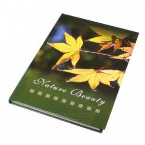 Záznamová kniha A5 100 listov linajková
