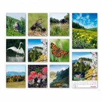 Nástenný kalendár Krásy slovenskej prírody 2020