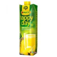 Džús Happy Day Ananás 100% 1l