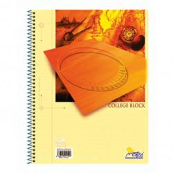 Blok College Notes A5 50 listov linajkový